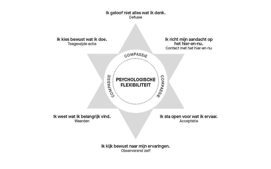 hexaster; act; compassie; hexaflex; veerkracht; onderwijs; coach; psychologische flexibiliteit